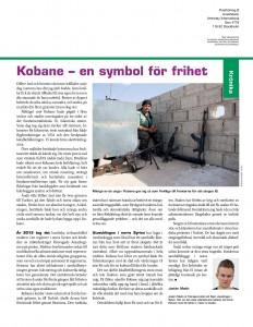 Syrien, Amnesty nov 2014-page-001