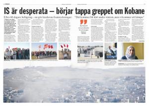 Syrien, Dagens ETC 2014-11-17