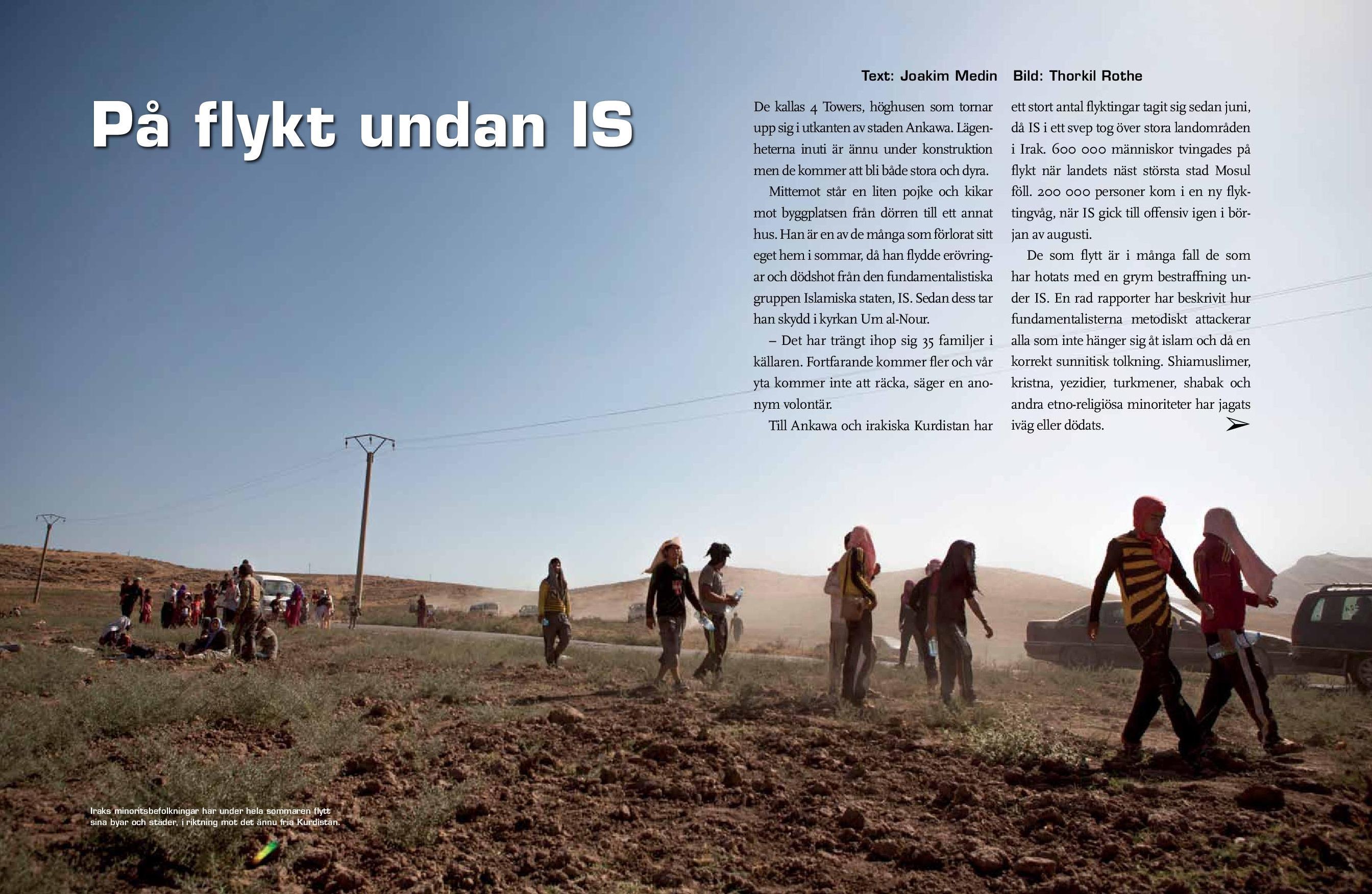 Irak, Amnesty sep 2014